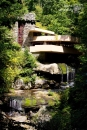 Fallingwater- Light